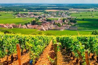 Panoramica Borgogna, Francia - Europa