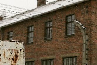 dettaglio, Auschwitz - Polonia
